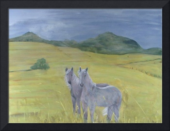 Buttes and Horses