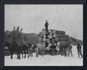logs from woods