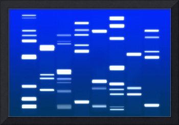 DNA Art Royal Blue
