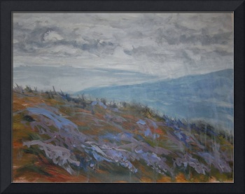 heather moorland in rain