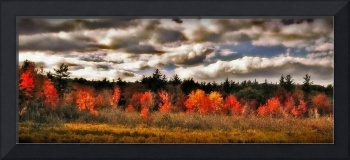 Abstract Of Francestown New Hampshire Landscape