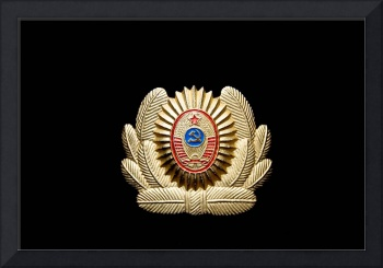 USSR army officer badge