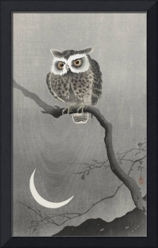 Owl on a Branch with Crescent Moon by Ohara Koson