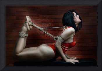 Hogtied - Fine Art of Bondage