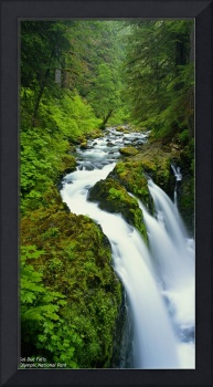 Sol Duc Falls (with captioning text)