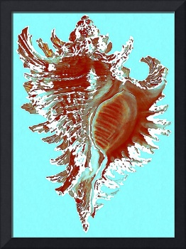 Rusty Turquoise Shell