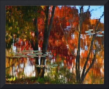 Hayes Pond Fall Reflection