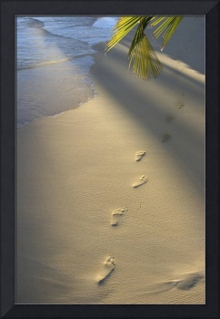 Footprints In Sand At Water's Edge, Soft Warm Gol