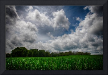 Bucolic 1 by Jim Crotty
