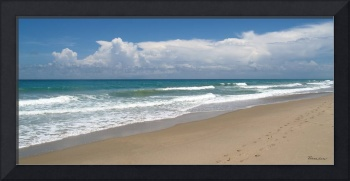 Treasure Coast Beach Florida Seascape C4