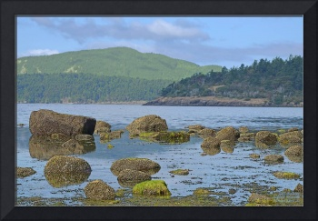 LOW TIDE MORNING LIGHT ON ORCAS ISLAND