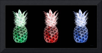 Triptych 14M2 Artistic Pineapples Green Red Blue