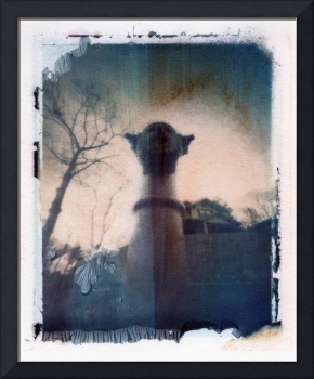 Polaroid Pinhole Image Transfer Perspective -Ant