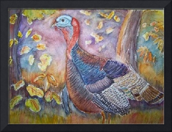 wild-turkey-in-the-brush-belinda-lawson