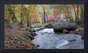 Creek in the Fall- Great Falls National Park