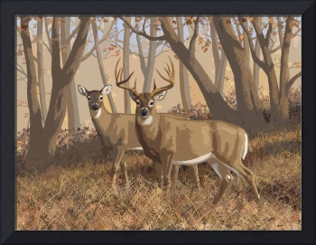 Fall Flame - Whitetail Deer In Autumn