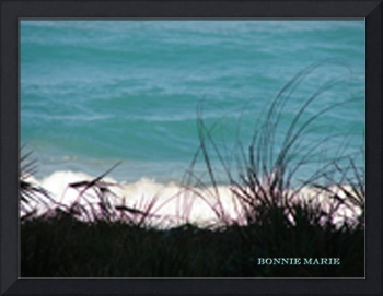 Bonnies Pic from sony cam 2-09 005 Ocean view_edit