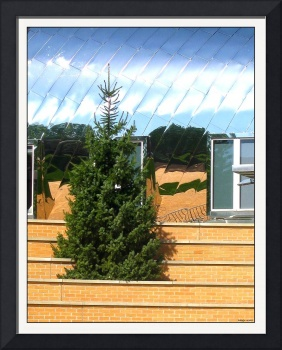 Gehry's Architectural Aluminum with Spruce
