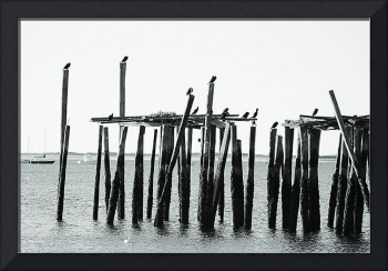Black White Morning in Provincetown