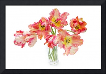 Parrot Tulips in a Glass Vase