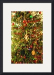 Oh Christmas Tree by Jacque Alameddine