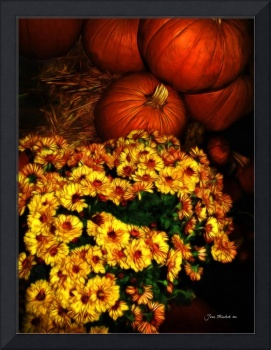Pumpkins and Flowers