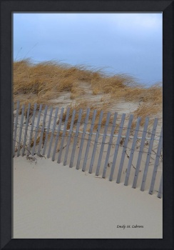 Sand Dunes at the Beach March 2013