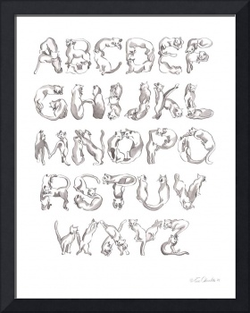 The Cat Alphabet