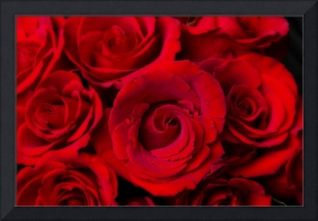 Red Rose Bouquet Dream