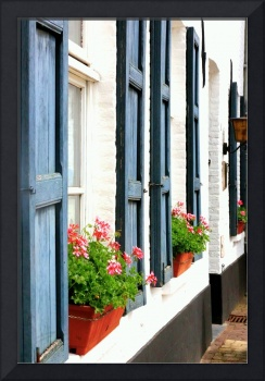 Dutch Window Boxes