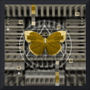 The Butterfly Machine