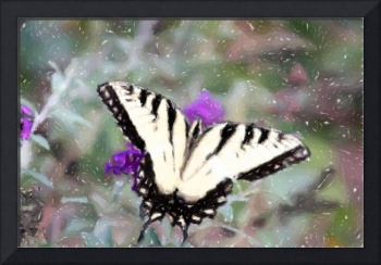 Swallow Tail Butterfly Charcoal Color