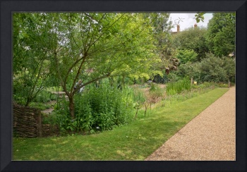 In the Physic Garden, Chelsea 20
