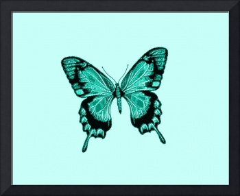 Blue Green Black Butterfly