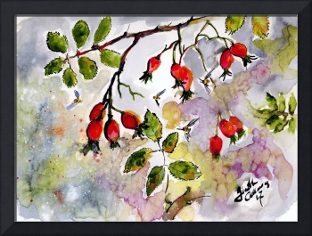 Rose Hips and Bees Watercolor and Ink