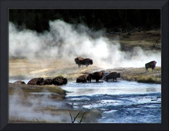 Buffalo Crossing - Come on Over