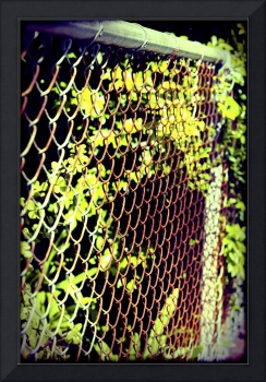 Rusty chain link fence plants frame filter
