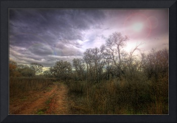 Cottonwood Backroad
