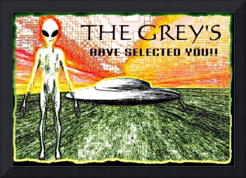 the greys have selected you