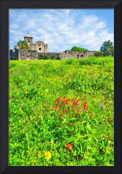 Wildflowers at the Goliad Presidio