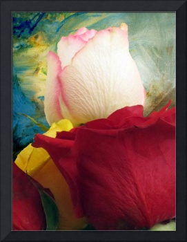 Roses in Abstract Light