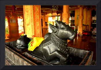 Statue of a cow in a Hindu temple