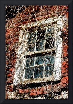 Blue Ridge Farm House Window