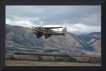 Dragonfly DH90 Warbirds Over Wanaka 2010 NZ