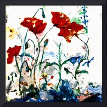 Abstract Poppies Provence