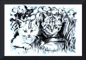 Baby Cats In Blue And White