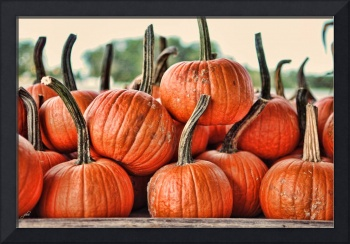 Dirty Little Pumpkins