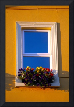 The Flowerly Window