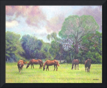 Horses Grazing Beneath Brushfire Skies