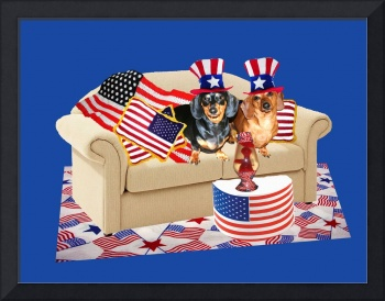 USA Flag Dogs
